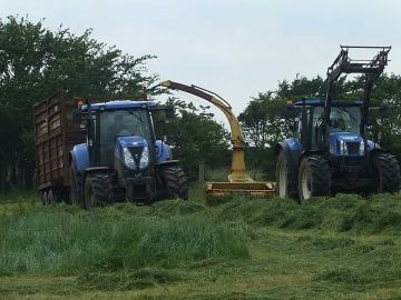 Tractors at silage